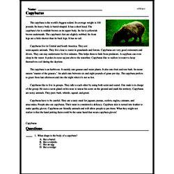 Print <i>Capybaras</i> reading comprehension.
