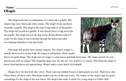 Print <i>Okapis</i> reading comprehension.
