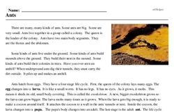 Print <i>Ants</i> reading comprehension.