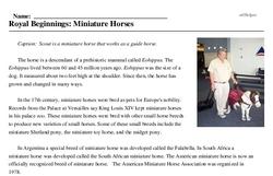 Print <i>Royal Beginnings: Miniature Horses</i> reading comprehension.