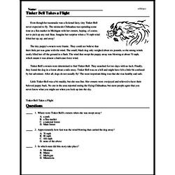 Print <i>Tinker Bell Takes a Flight</i> reading comprehension.