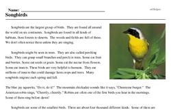 Print <i>Songbirds</i> reading comprehension.