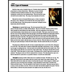 Print <i>Three Types of Mammals</i> reading comprehension.