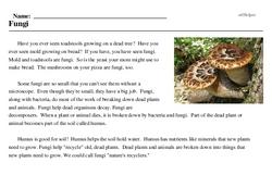 Print <i>Fungi</i> reading comprehension.