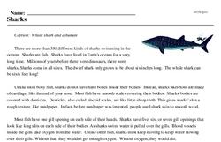 Print <i>Sharks</i> reading comprehension.
