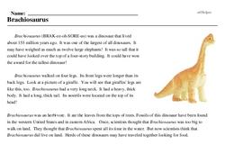 Print <i><i>Brachiosaurus</i></i> reading comprehension.