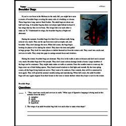 Print <i>Boxelder Bugs</i> reading comprehension.