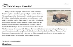 Print <i>The World's Largest House Pet?</i> reading comprehension.