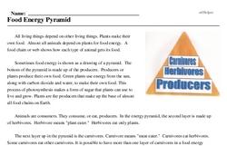 Print <i>Food Energy Pyramid</i> reading comprehension.