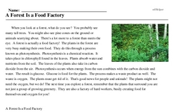 Print <i>A Forest Is a Food Factory</i> reading comprehension.