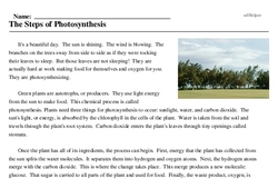 Print <i>The Steps of Photosynthesis</i> reading comprehension.