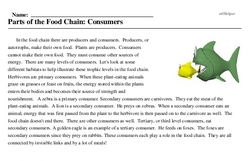 Print <i>Parts of the Food Chain: Consumers</i> reading comprehension.