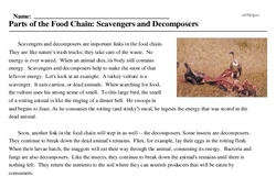 Print <i>Parts of the Food Chain: Scavengers and Decomposers</i> reading comprehension.