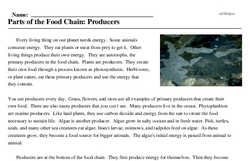 Print <i>Parts of the Food Chain: Producers</i> reading comprehension.
