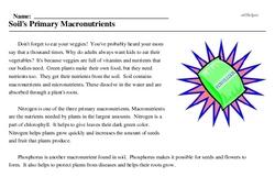 Print <i>Soil's Primary Macronutrients</i> reading comprehension.