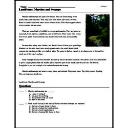 Print <i>Landforms: Marshes and Swamps</i> reading comprehension.