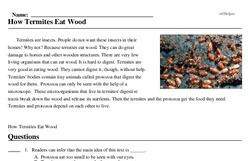 Print <i>How Termites Eat Wood</i> reading comprehension.