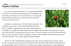 Print <i>Popular Ladybugs</i> reading comprehension.