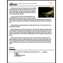 Print <i>Electric Eels</i> reading comprehension.