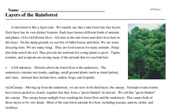 Print <i>Layers of the Rainforest</i> reading comprehension.