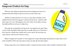 Print <i>Dangerous Products for Dogs</i> reading comprehension.