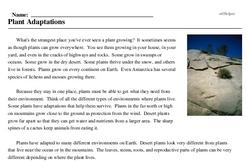 Print <i>Plant Adaptations</i> reading comprehension.