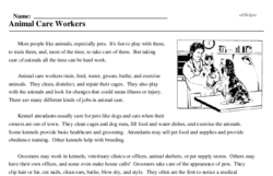 Print <i>Animal Care Workers</i> reading comprehension.