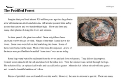 Print <i>The Petrified Forest</i> reading comprehension.
