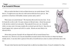 Print <i>Cat Scratch Disease</i> reading comprehension.