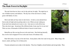 Print <i>The Rain Forest in Daylight</i> reading comprehension.