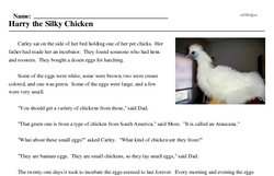 Print <i>Harry the Silky Chicken</i> reading comprehension.