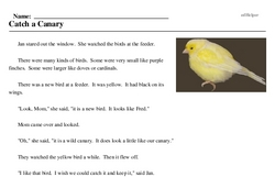 Print <i>Catch a Canary</i> reading comprehension.